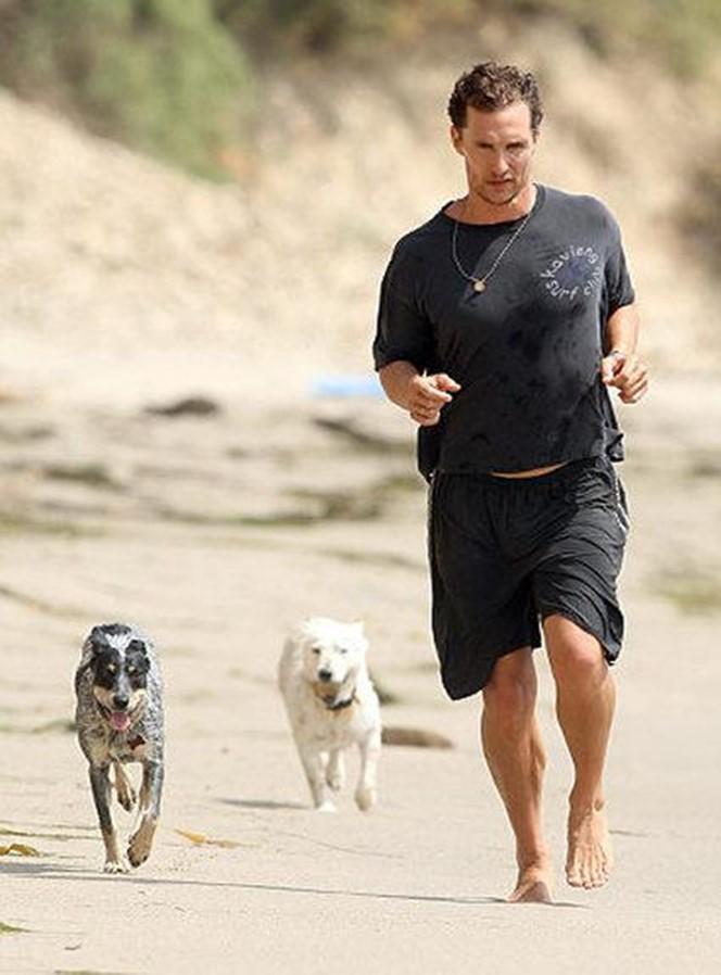 Макконахи и австралийская пастушья собака