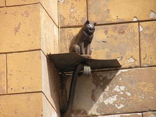 кот Елисей в Петербурге