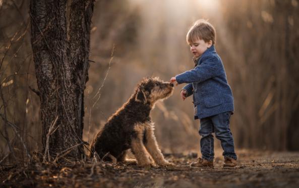 ребенок и собака - польза или вред