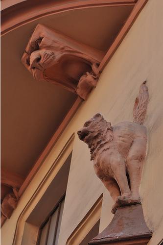 Скульптура кота на доме в Петербурге
