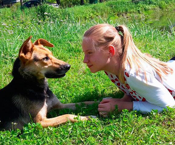 Собака и девочка смотрят друг на друга
