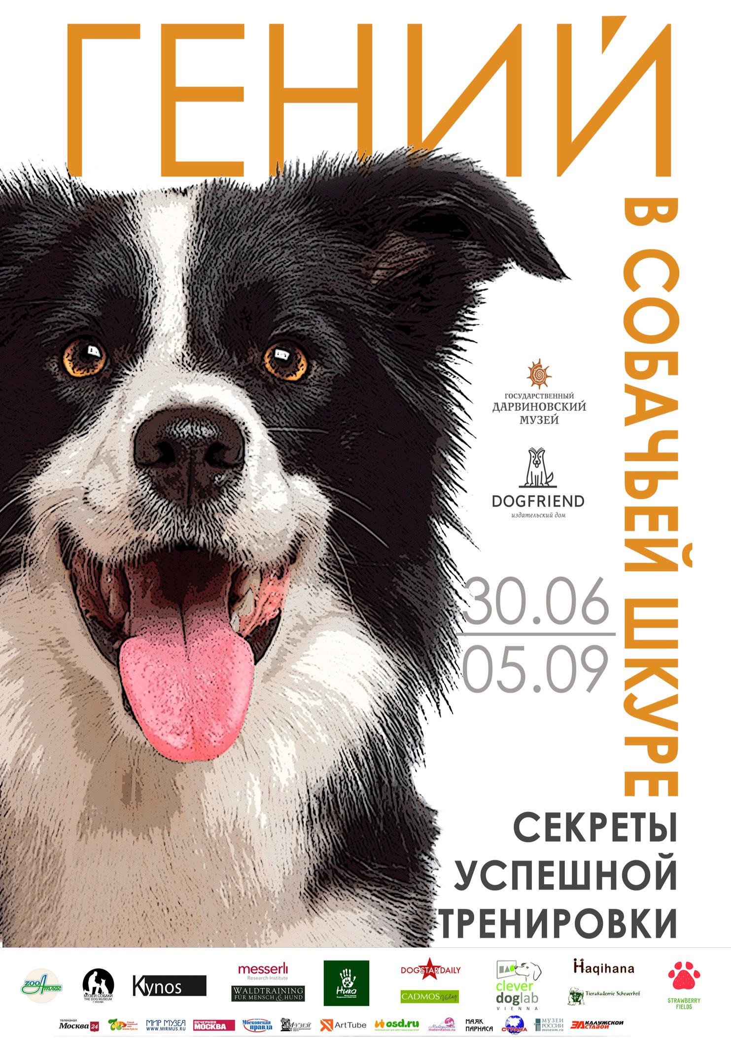 Выставка и конференция по тренировке собак в Москве