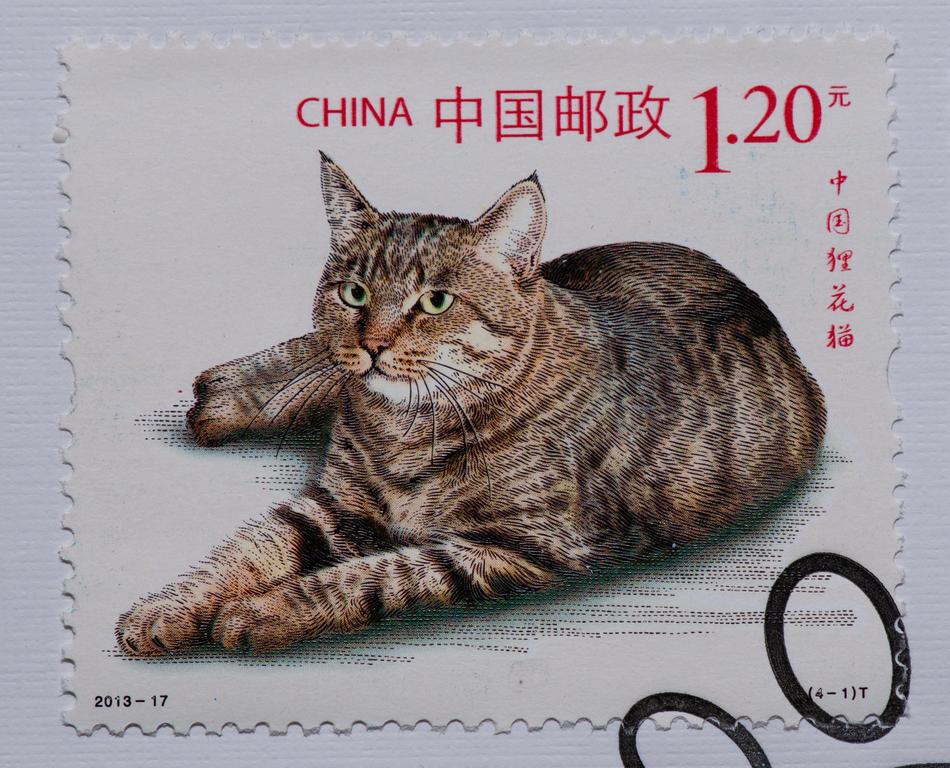 порода кошек дракон ли на марках