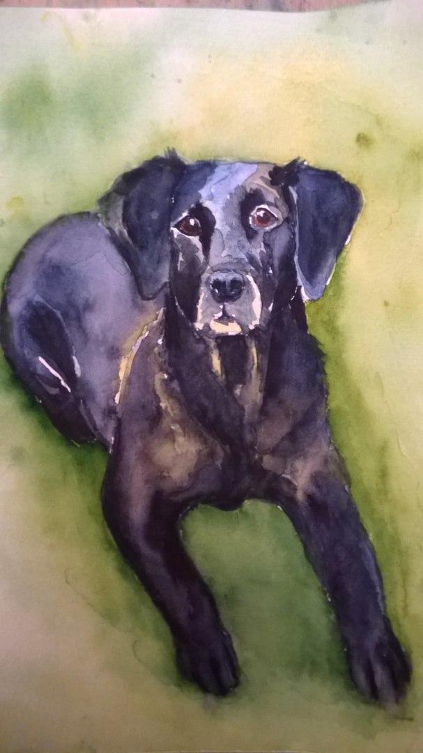 рисунок собаки на заказ