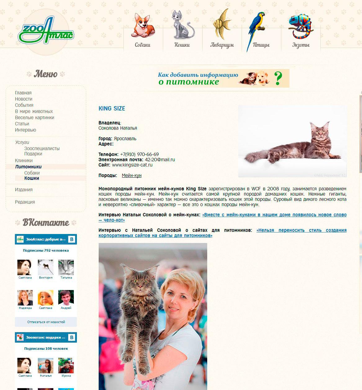 питомники кошек в россии