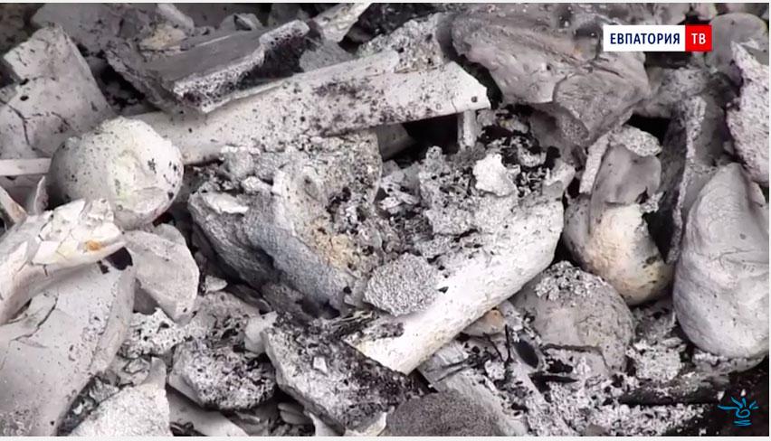останки сожженых собак