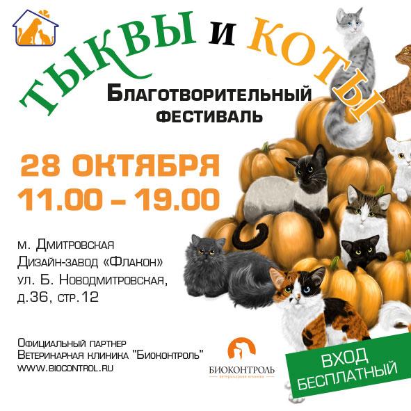 благотворительный фестиваль тыквы и коты 2017