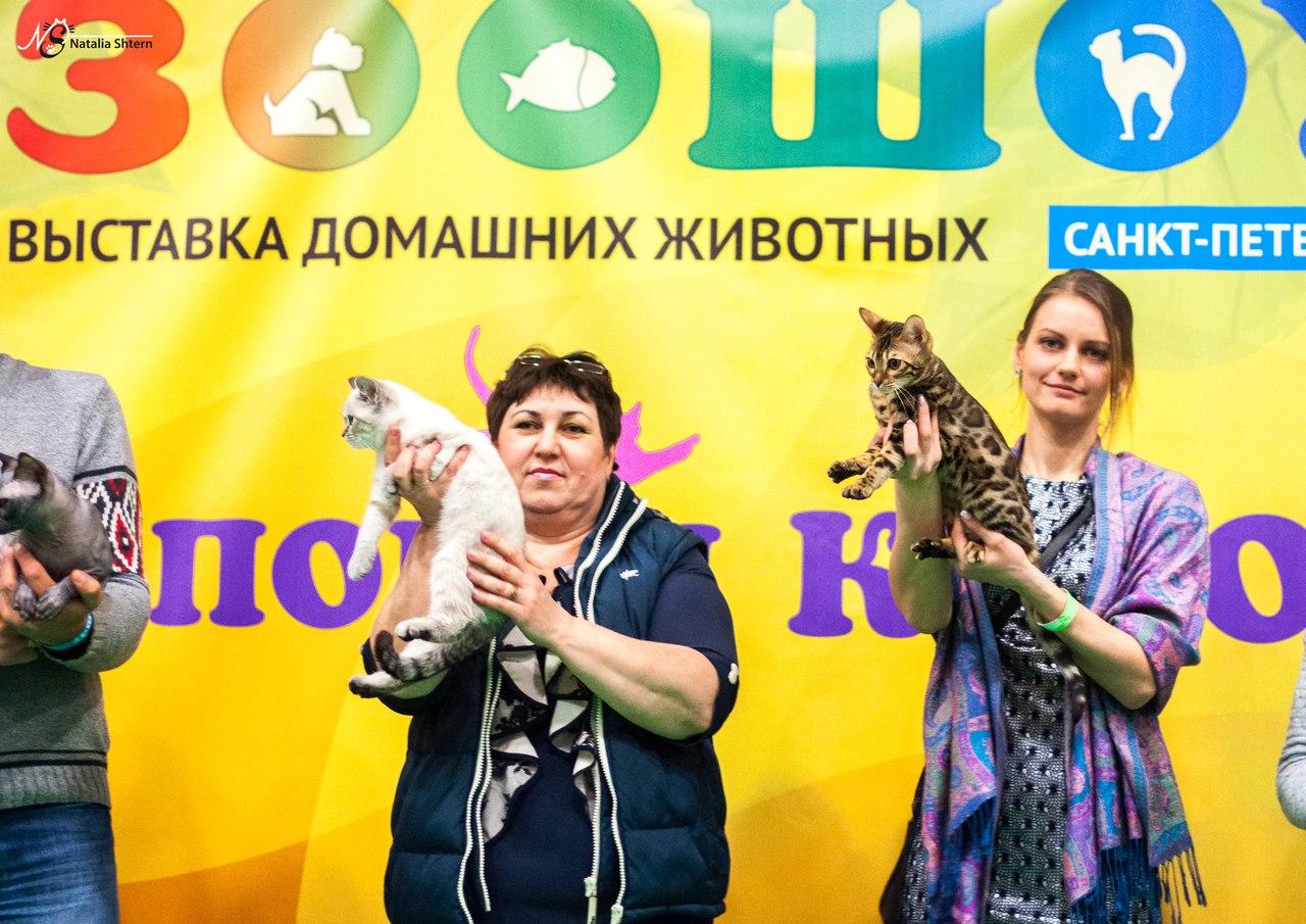 выставка Зоосфера в Санкт-Петербурге в ноябре 2016 года